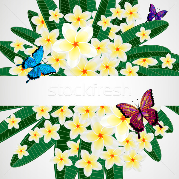 Eps10 floral design fleurs papillons papillon Photo stock © OlgaYakovenko