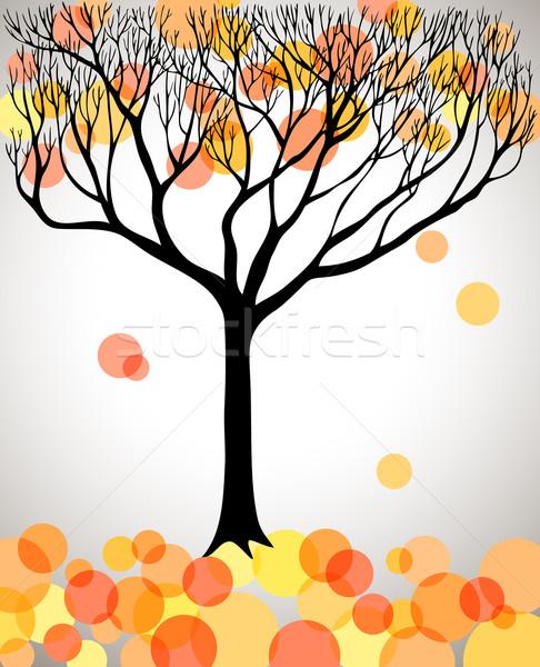 Autumn tree Stock photo © oliopi