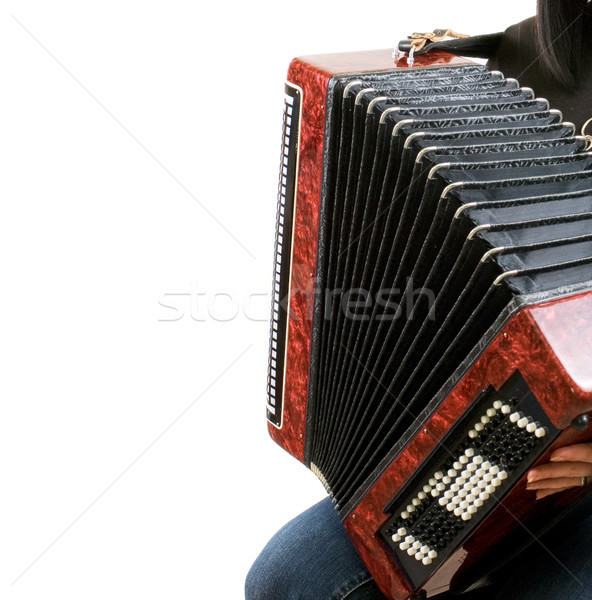 accordion Stock photo © olira