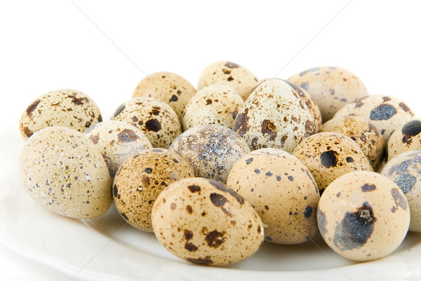 delicatessen quail eggs Stock photo © olira
