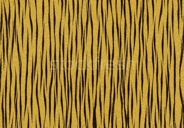 tiger texture background Stock photo © olira