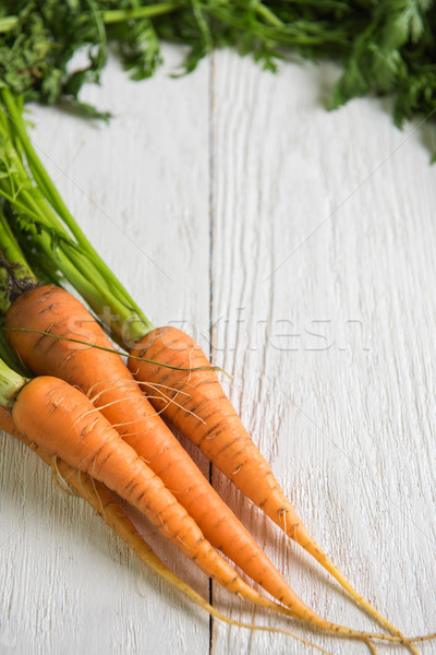 Stock photo: Freshly grown carrots