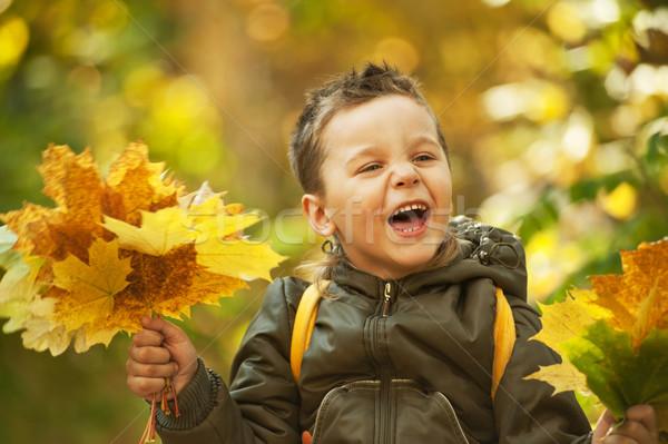 Sonbahar bebek erkek renkli park gülümseme Stok fotoğraf © olira