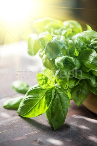 свежие органический базилик листьев деревянный стол продовольствие Сток-фото © olira