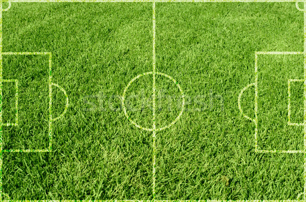 Soccer green grass Stock photo © olira