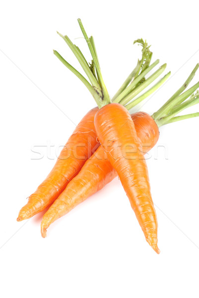 Carrots Stock photo © olira