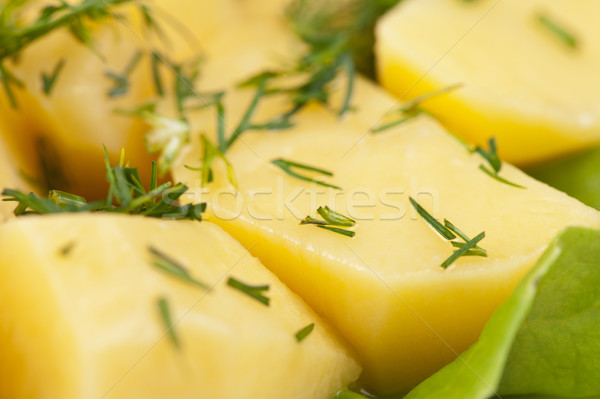 potatoes Stock photo © olira