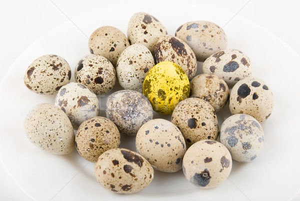 золото яйцо многие яйца изолированный белый Сток-фото © olira