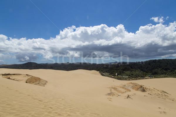 Gigante duna Nueva Zelandia vista superior norte Foto stock © oliverfoerstner