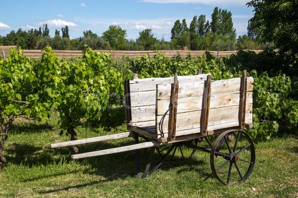 Legno cart vigneto vecchio legno campo Foto d'archivio © oliverfoerstner