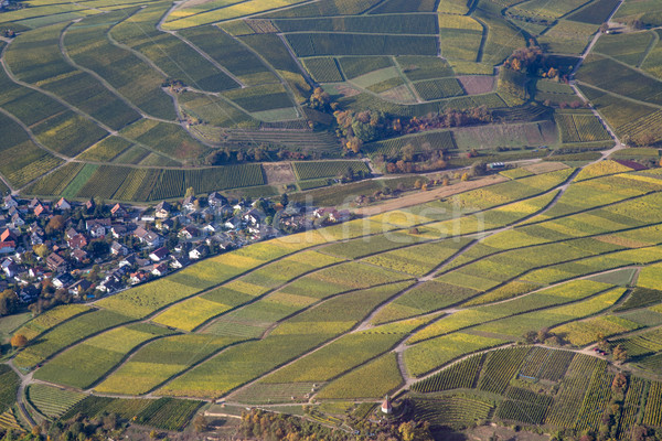 Aerial view of vineyards in Southern Germany Stock photo © oliverfoerstner