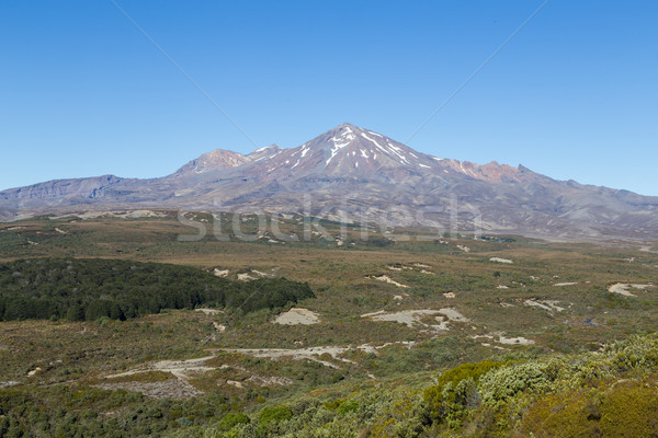 View of Mount Ruapehu Stock photo © oliverfoerstner