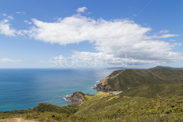 Coastline at Cape Reinga, New Zealand Stock photo © oliverfoerstner