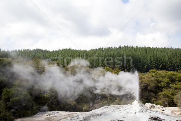 Dame geiser New Zealand uitbarsting noorden eiland Stockfoto © oliverfoerstner