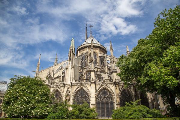 Church Notre Dame in Paris Stock photo © oliverfoerstner