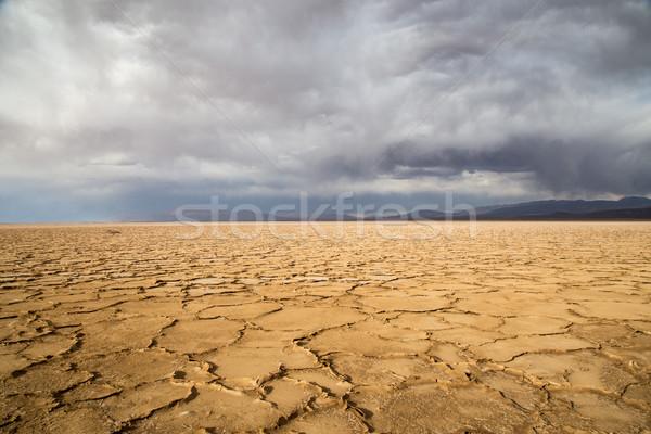 アルゼンチン 塩 北西 風景 プール 白 ストックフォト © oliverfoerstner