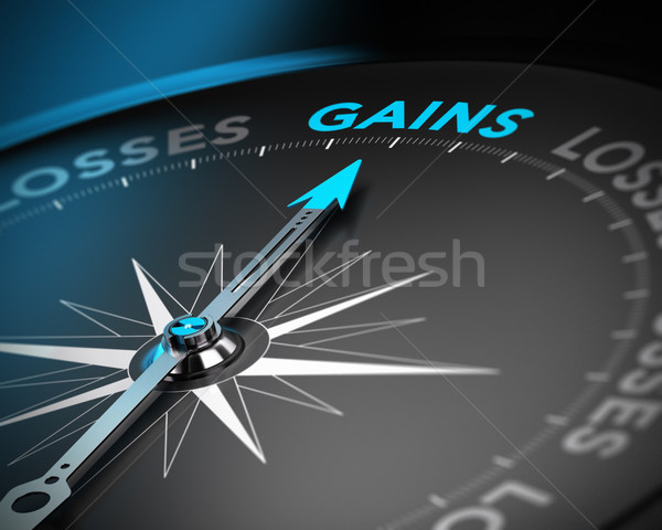 Capital Gains Concept Stock photo © olivier_le_moal
