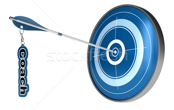 personal coach - target arrow Stock photo © olivier_le_moal