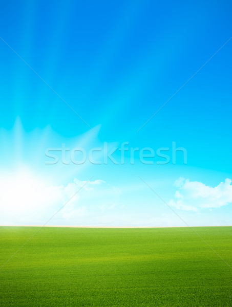 Landscape - green field and blue sky  Stock photo © olivier_le_moal