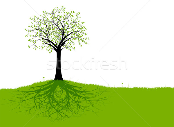 Vector Tree and Roots Stock photo © olivier_le_moal