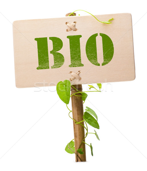 green and bio sign Stock photo © olivier_le_moal