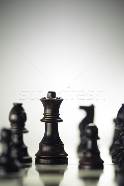 Risk Anticipation Concept, Chess Game Stock photo © olivier_le_moal