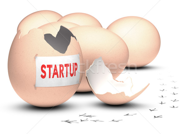Startup Development Concept Stock photo © olivier_le_moal