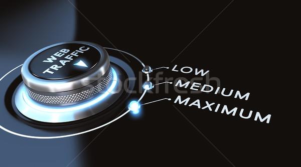 веб движения переключатель максимальный черный синий Сток-фото © olivier_le_moal