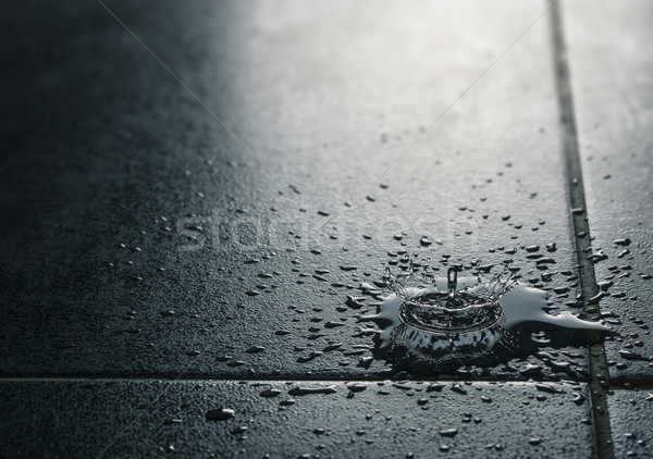 Water Leak, Waterproof Tile Flooring Stock photo © olivier_le_moal