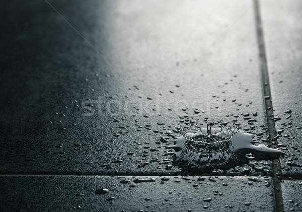 Su sızıntı su geçirmez karo düşen Stok fotoğraf © olivier_le_moal