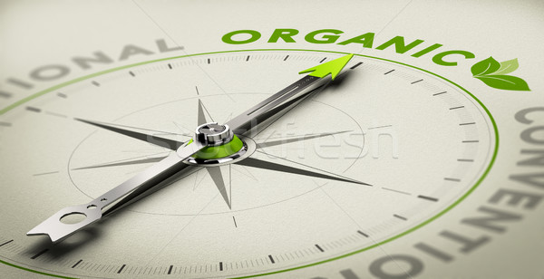 Orgânico naturalismo produtos bússola agulha Foto stock © olivier_le_moal