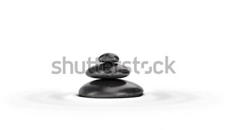 Drie zwarte witte Stockfoto © olivier_le_moal