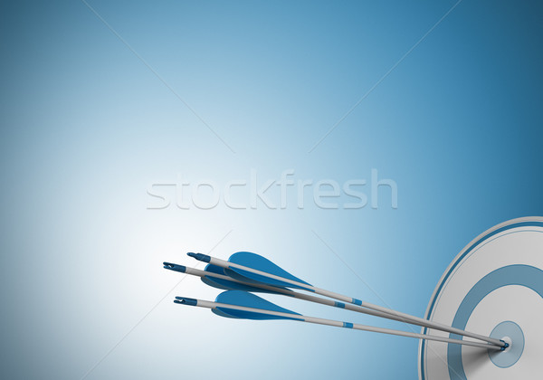 same objective, target arrow Stock photo © olivier_le_moal