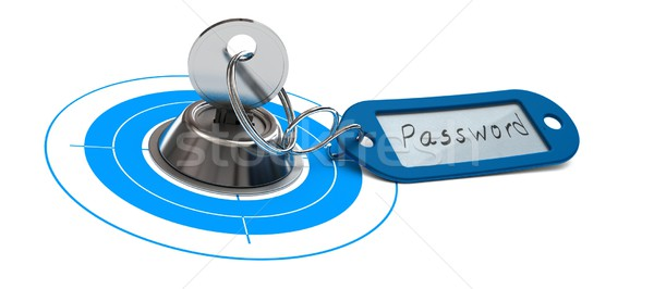 Password Access, Internet Security, Secured Web Stock photo © olivier_le_moal