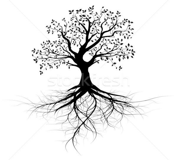 Vector - whole vector black tree with roots Stock photo © olivier_le_moal