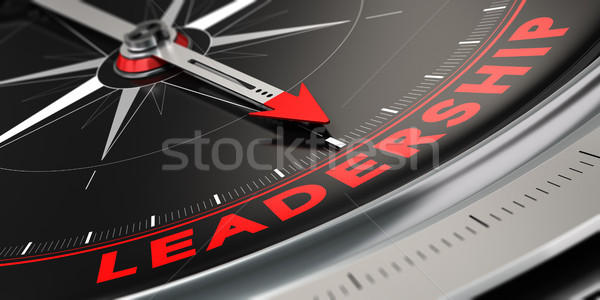 Successful Leader, Leadership Concept Stock photo © olivier_le_moal