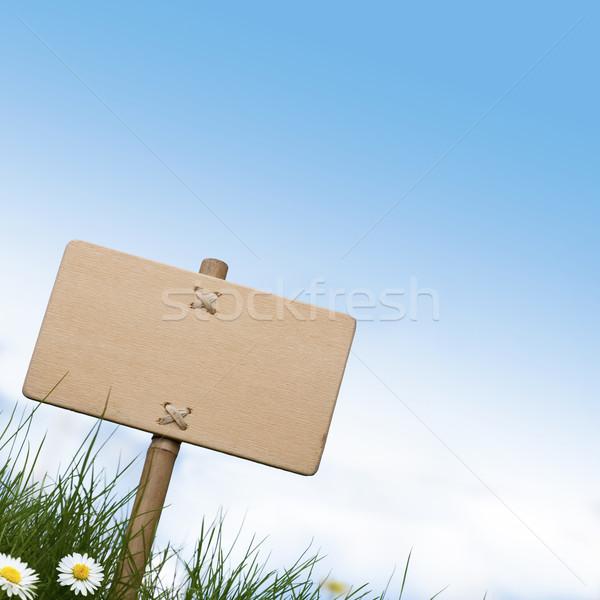 Vert signe herbe verte marguerites fleurs Photo stock © olivier_le_moal