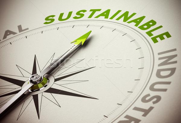 Zrównoważony działalności kompas igły wskazując Zdjęcia stock © olivier_le_moal