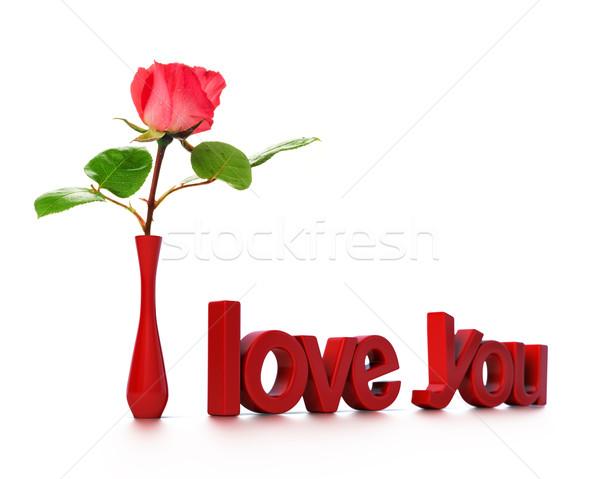 Amour carte un message fleur rose Photo stock © olivier_le_moal