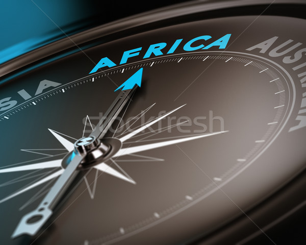 Travel destination - Africa Stock photo © olivier_le_moal