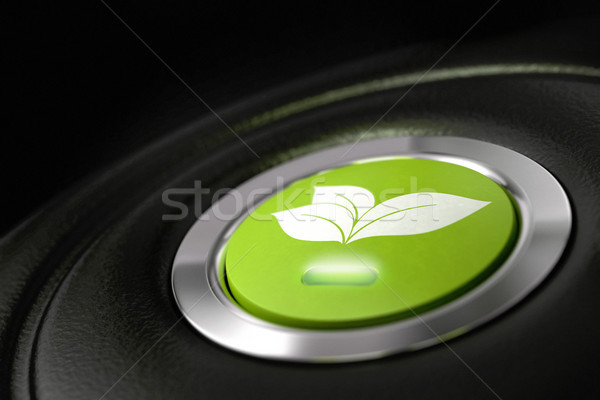 green driving, fuel economy Stock photo © olivier_le_moal