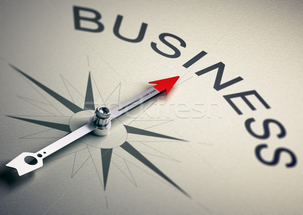 Business Consulting Strategy Management Stock photo © olivier_le_moal