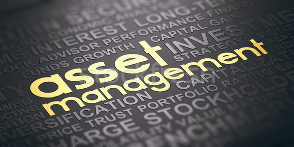 Stock photo: Asset Management Background, Words Cloud Concept In Black and Go