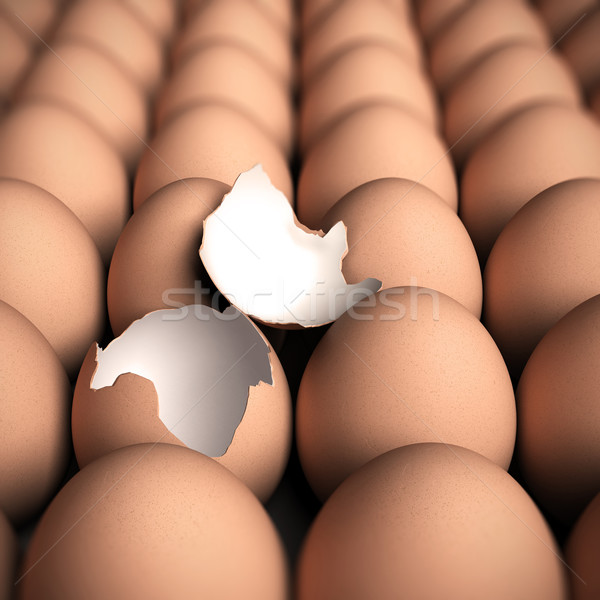 Alle neue dringende Bild Eier ein Stock foto © olivier_le_moal