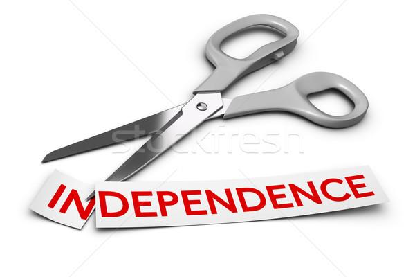 Dépendance vs dépendance mot coupé deux Photo stock © olivier_le_moal