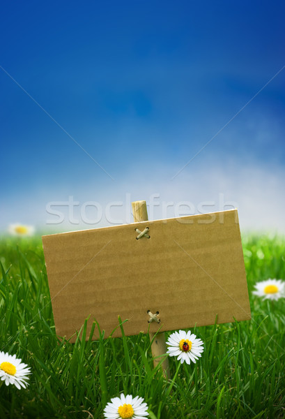 Foto stock: Verde · assinar · jardim · grama · bandeira · natureza