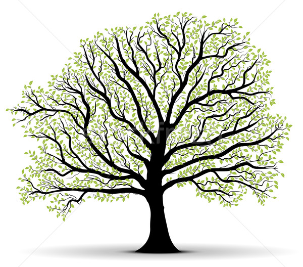 Vector - Environmental Protection green tree Stock photo © olivier_le_moal