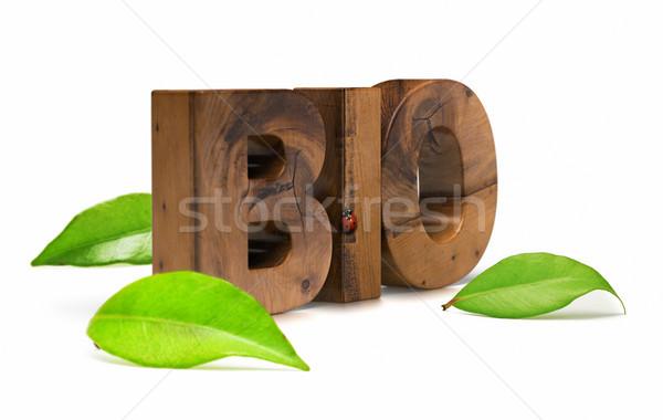 Bio mot feuilles vertes bois coccinelle blanche Photo stock © olivier_le_moal
