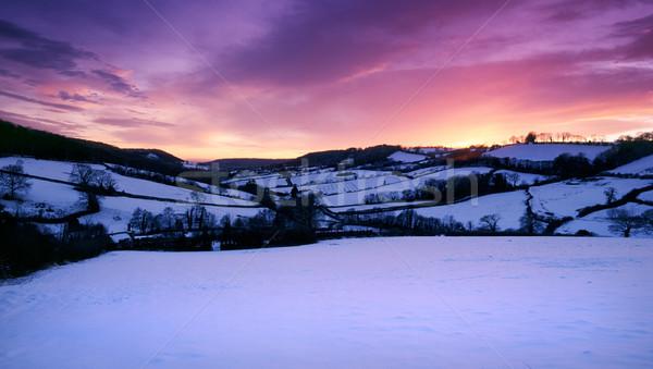 Kar kapalı alan nadir güzel Stok fotoğraf © ollietaylorphotograp