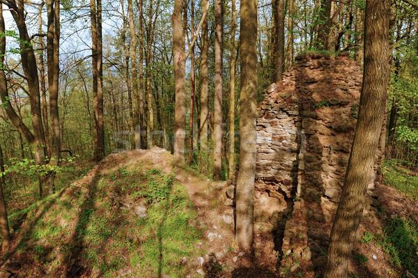 старые руин неизвестный замок глубокий лесу Сток-фото © ondrej83